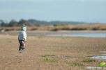 Découverte de la plage et des oiseaux à marée basse