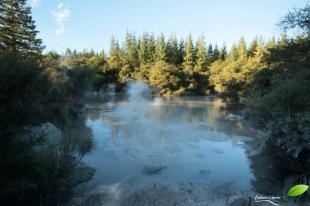 Mud pool, Wai-o-tapu